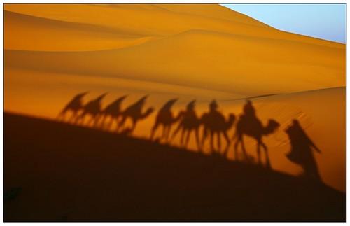 http://ecotality.com/life/wp-content/uploads/2007/12/sahara_desert.jpg