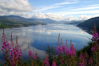 Ireland_15326850