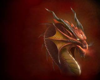 Dragon_head_Wallpaper