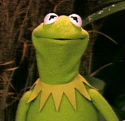 Kermit-1-1