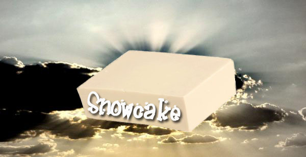 Snowcake from heaven copy