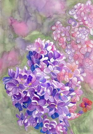 fragrance review elizabeth w lilac bsb beauty news